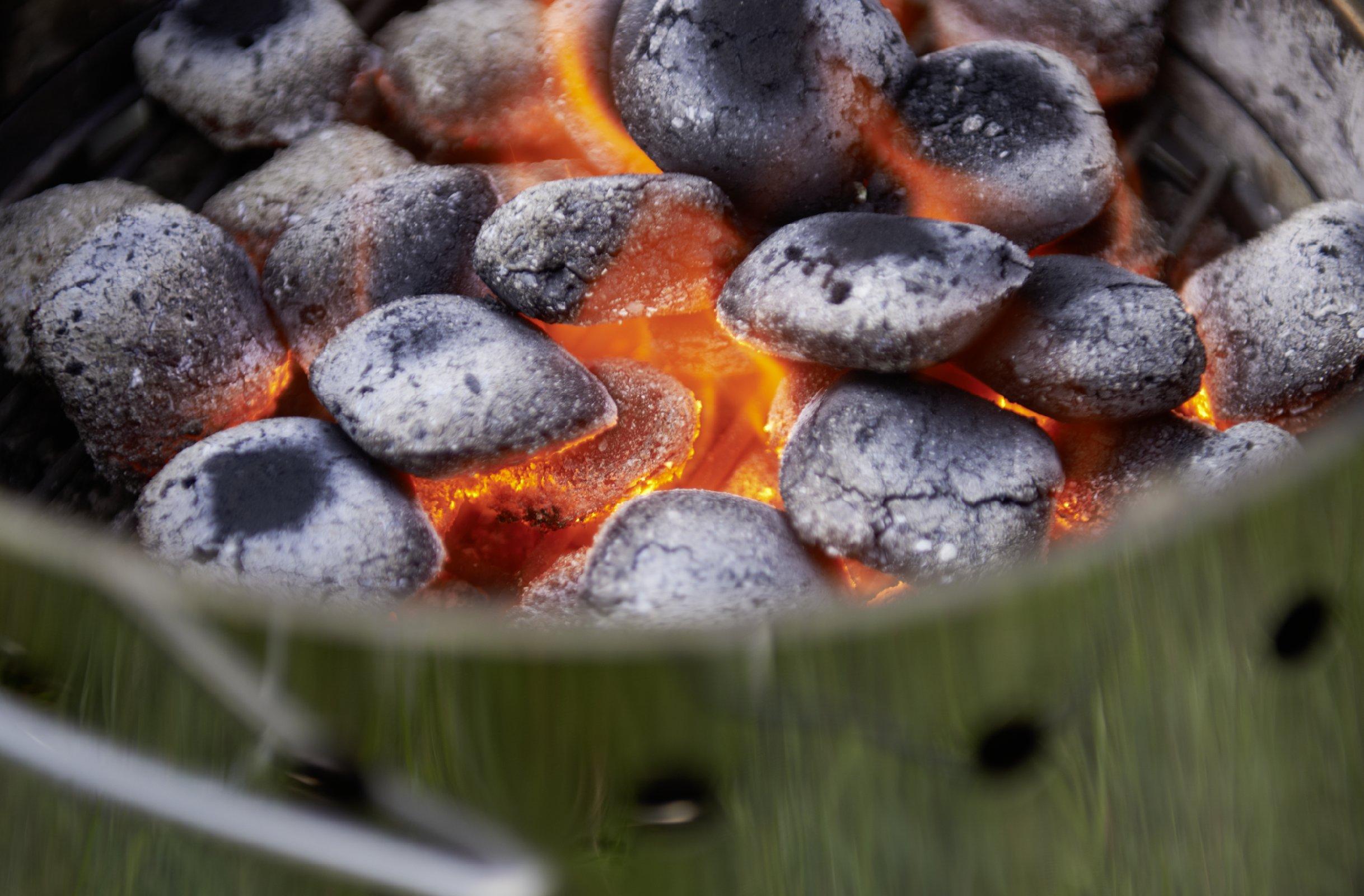 Petromax ATAGO barbecue en acier inoxydable barbecue foyer four